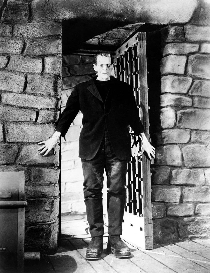 Frankenstein (Boris Karloff) 10