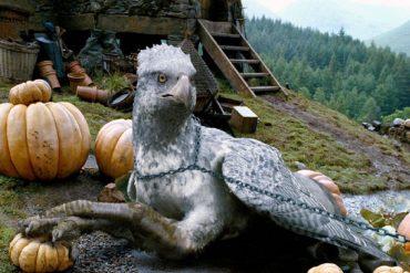 Harry Potter, David Yates, Animales fantásticos y dónde encontrarlos