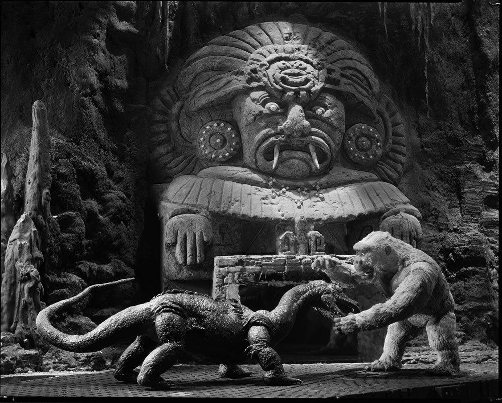 El pequeño Kong también sabe pelear ferozmente