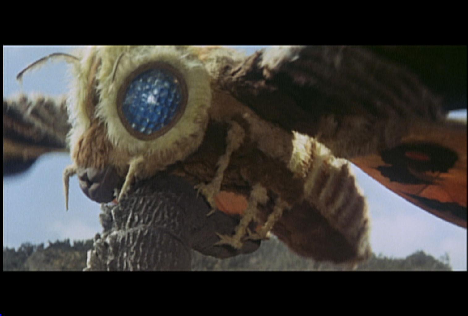 Mothra contra Godzilla