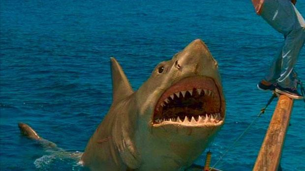 El tiburón Bruce ha vivido mejores momentos