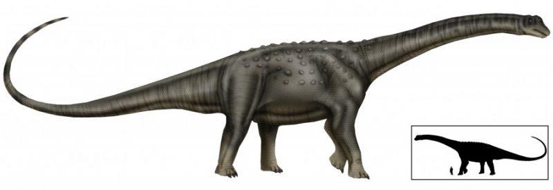 El Titanosaurus real